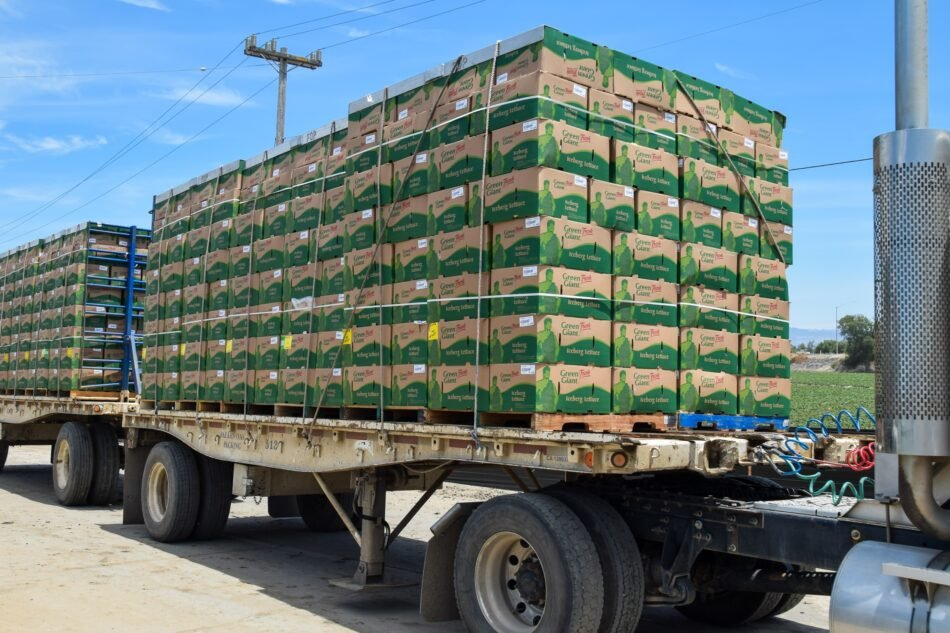 Food beverage industry shipping fruit vegetables transport
